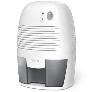 Best Mini, First Runners-Up: hOmeLabs Small