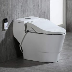 WOODBRIDGE Luxury Elongated One Piece Toilet